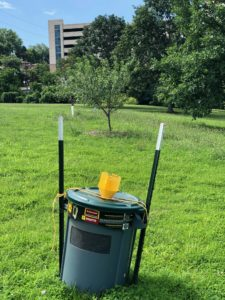 Large trashcan mass trap.  These generally only need to be emptied at the end of the Japanese beetle season.