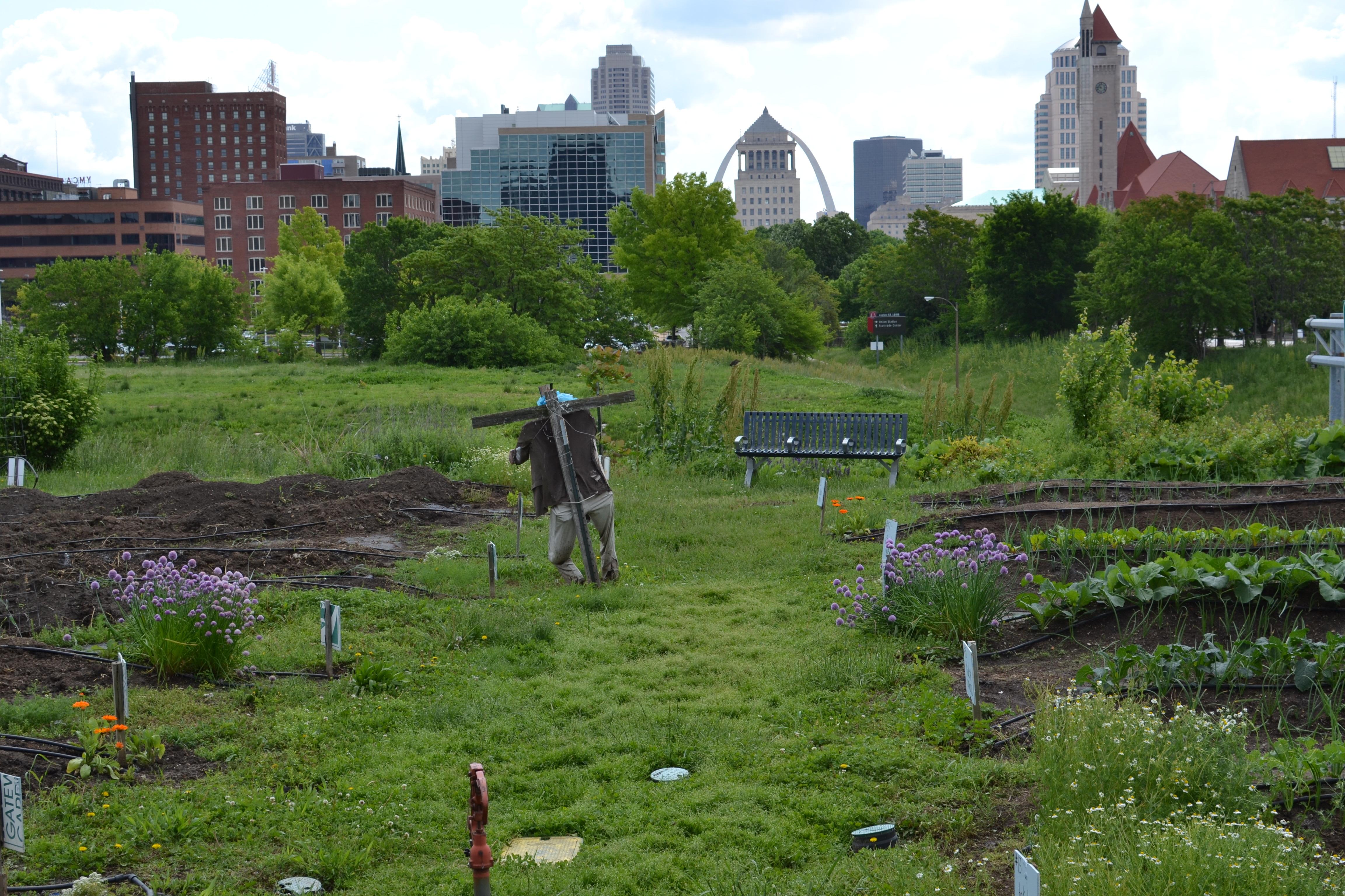 3 May 2016 (8) Gateway Greening Urban Farm