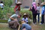 International Welcome School Garden Expansion 2016 2