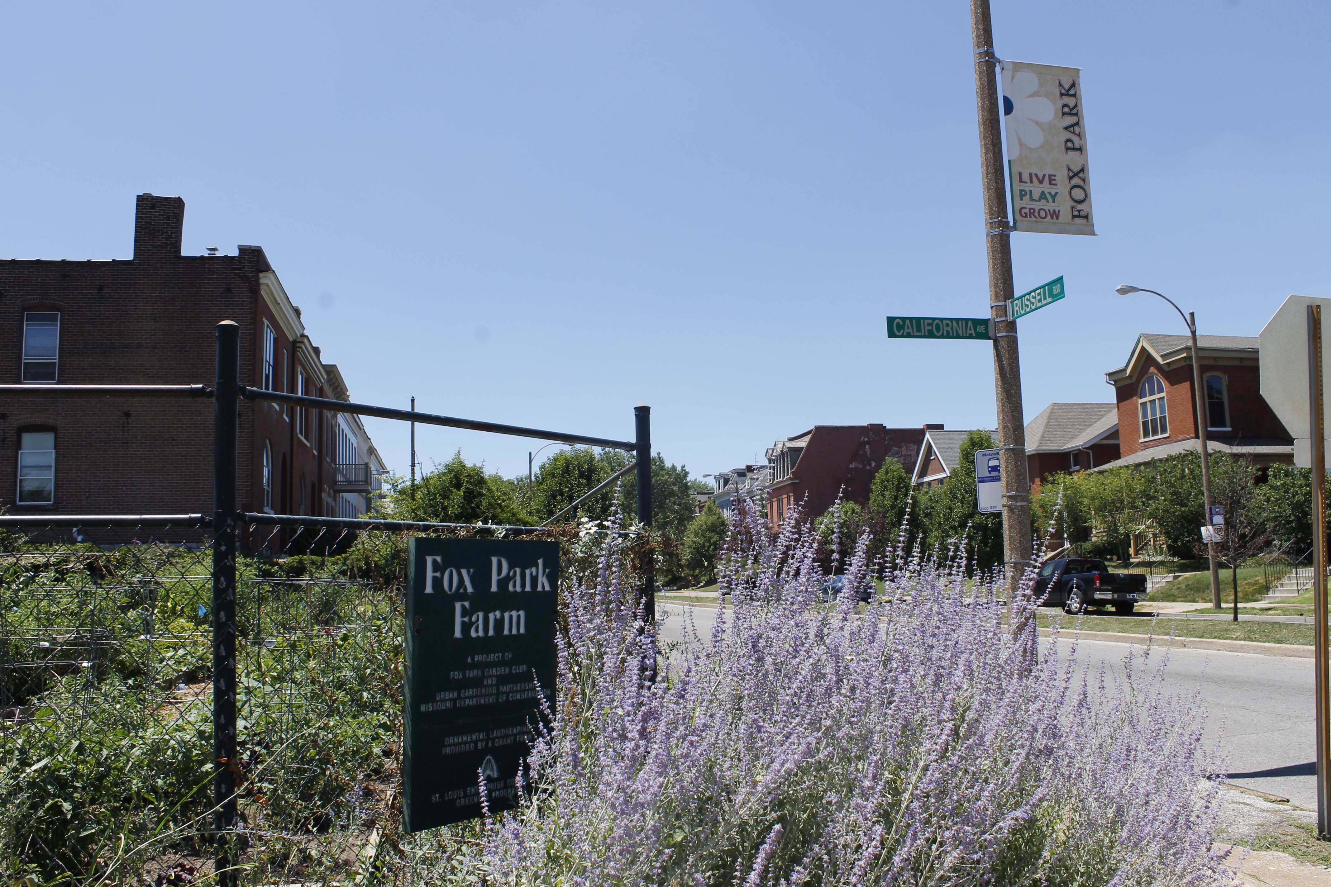 Fox Park Comm Garden_2012June 22 (5)