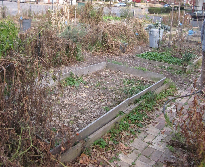 FoxParkFarm_Garden_11172010 (1)