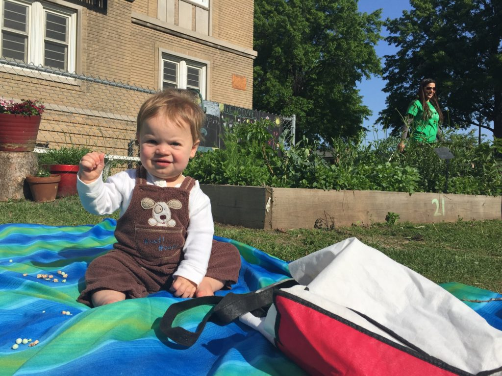 This infant comes with his mom at Mallinckrodt school garden and brings his own seating. His mom weeds and plants while he sits and waves at everyone!
