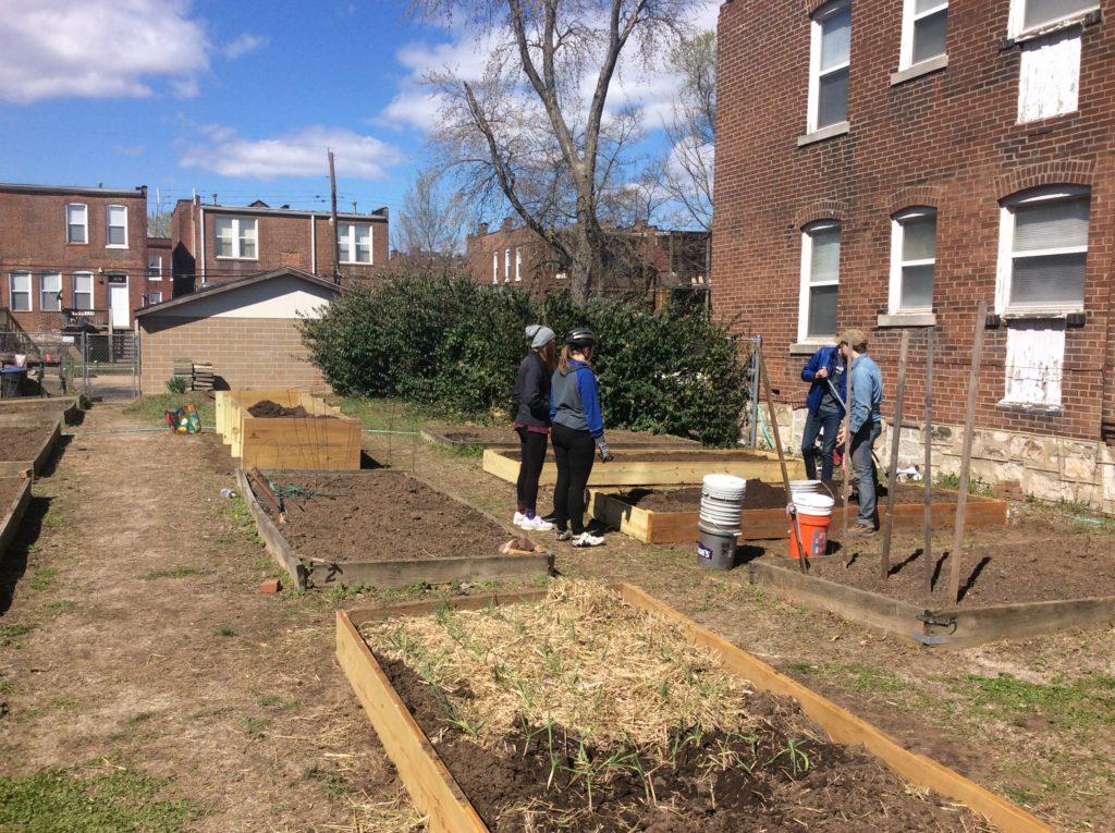 DeSales Community Garden 01