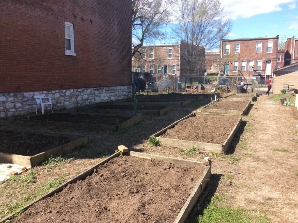 DeSales Community Garden 02
