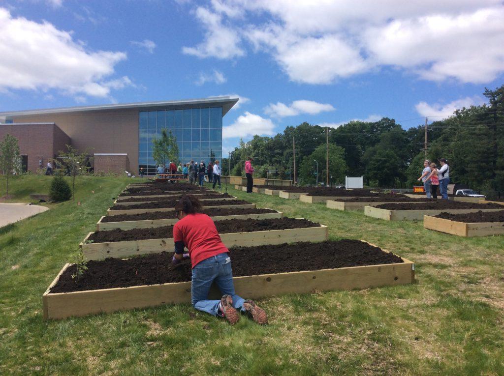 Grant's View Community Garden Installation 2016