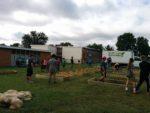 Bayless Elementary School Garden Installation 2016
