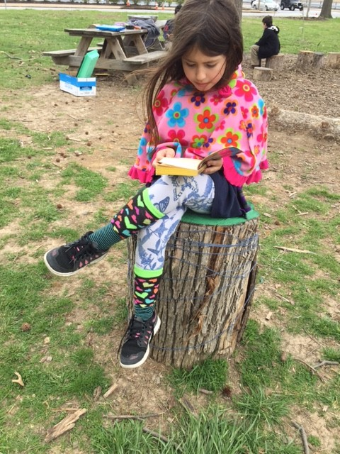 Another great feature in any community or school garden is to have a place to sit. These stumps were delivered free through city forestry department. This student is reading a book she checked out from the Little Free Library that lives in the garden. It's all about creating spaces that invite.