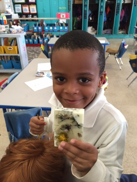 We learned a little bit about states of matter as we made soaps in our school garden using using the dried herbs from last year and flowers from this spring. Students were so proud to show of their work.