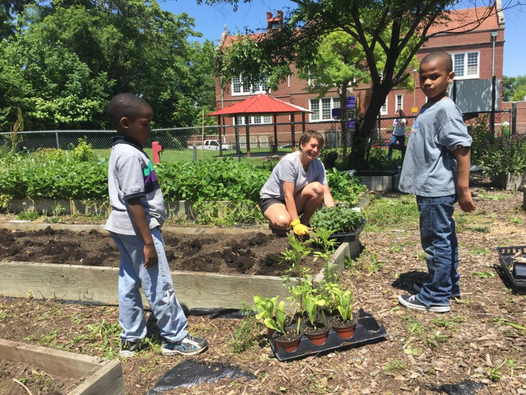 Mallinckrodt School Garden 01