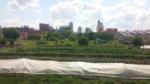 Gateway Greening Urban Farm 16