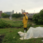 Blog | Rain Garden or Urban Farm 5 2017 01